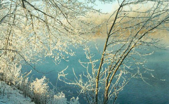 Outstanding Scenic River Photos Easy Diy Christmas Decorations Tissureus
